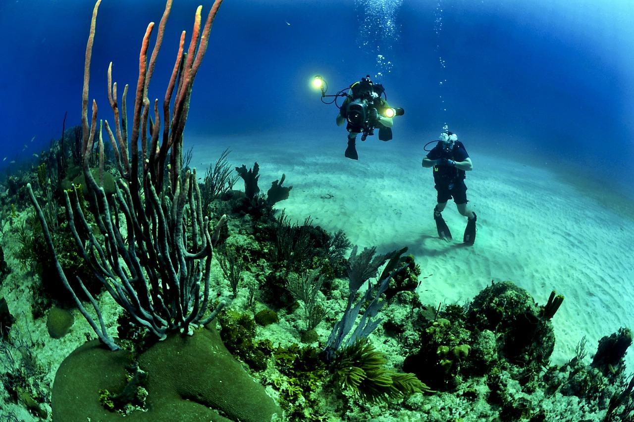 https://villaskalafatis.com/wp-content/uploads/2020/02/divers-681516_1280.jpg